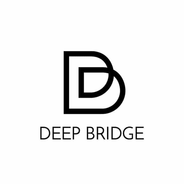 DEEP Bridge Koen Belien - Home